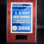 2006 Top Performing Companies in Northeast Ohio